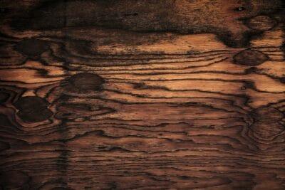 Wood photo by Photo by Michael Dziedzic on Unsplash