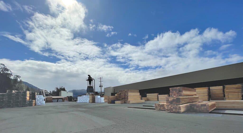 San Port Alberni B Mill: Bin sorter building (background) and B Mill storage yard (foreground).