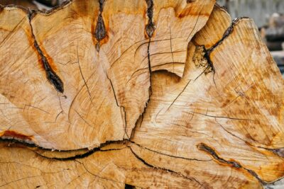 Import/Export Wood Purchasing News 6