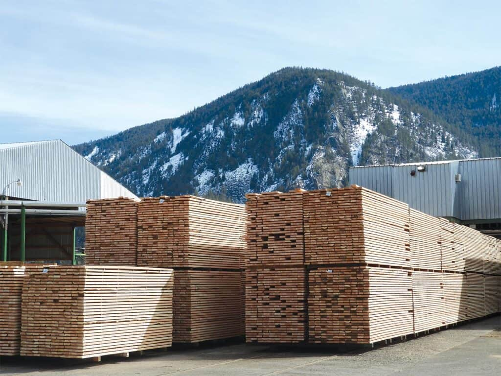 This Douglas Fir dimension has been prepped for kiln drying at Thompson River Lumber.