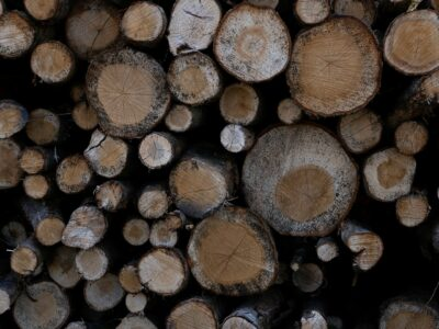 Softwood Forest Products Buyer 18