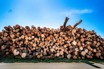 Import/Export Wood Purchasing News 5