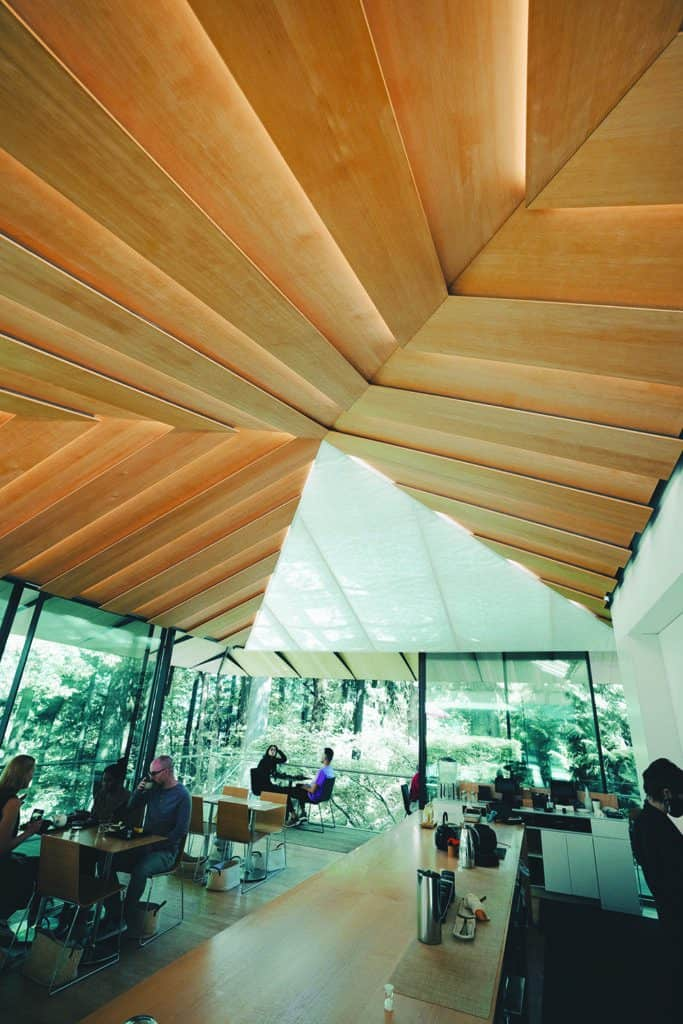 EBPA members trade various lumber species. Here, Port Orford Cedar, a U.S. softwood species, is shown as an example of how U.S. building materials can be applied in Japanese architecture.